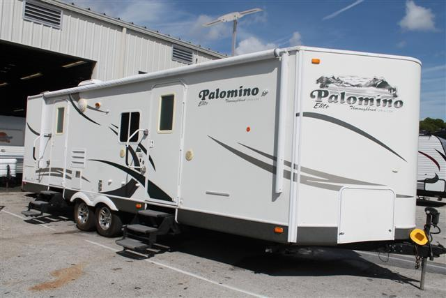 2009 Palomino Thoroughbred
