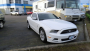 Used 2013 Ford Mustang V-6 Other For Sale