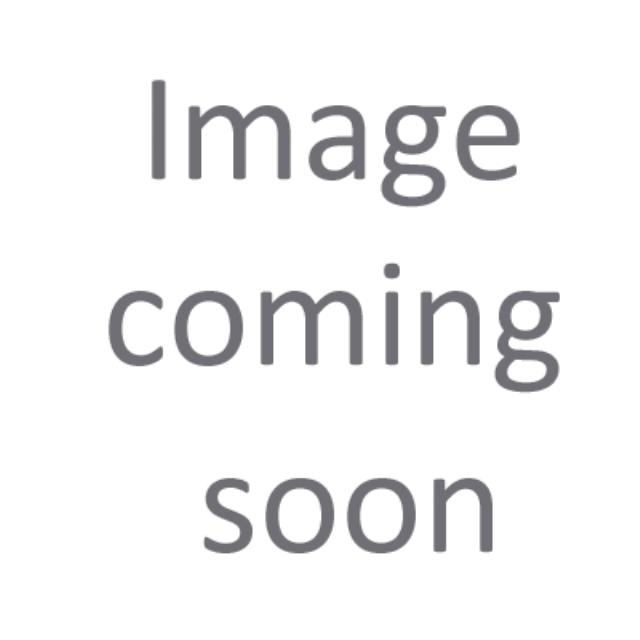 2015 Fleetwood Southwind