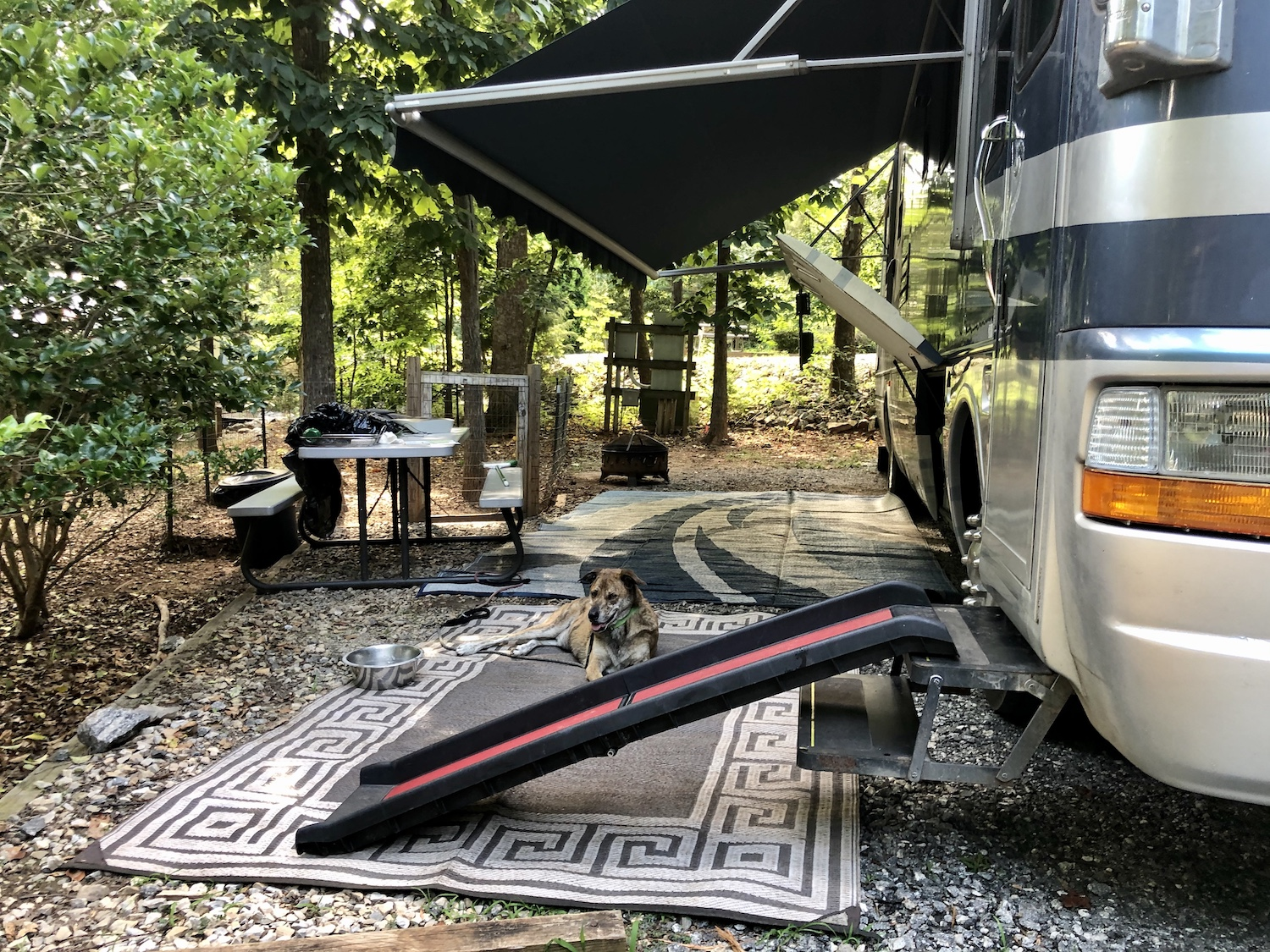 20 Incredibly Pet-Friendly Campgrounds